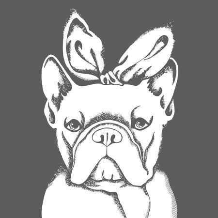 Bulldog francês. Ilustração vetorial para um cartão ou cartaz. Imprima em roupas. Filhote fofo. Cão de pedigree. Foto de archivo - 89929159