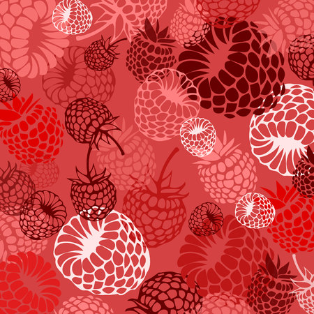 berry, raspberry, vector, fruit, food, sweet, illustration, natural, summer