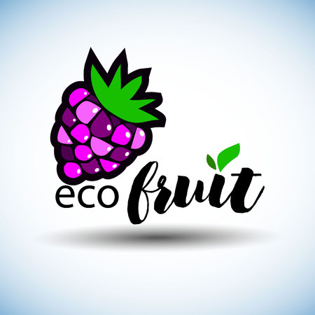 berry, raspberry, vector, fruit, food, sweet, illustration, natural, summer Stok Fotoğraf - 110312574