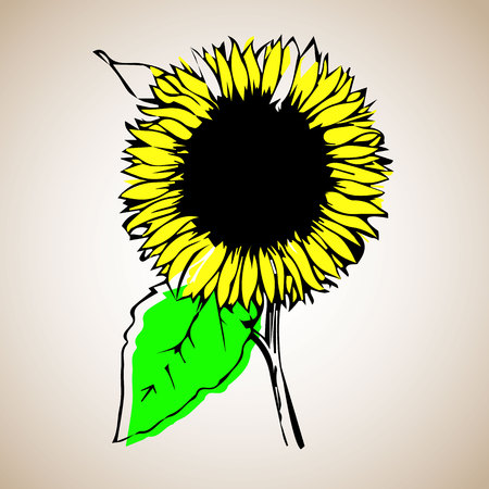 sunflower, nature, blossom, flower, plant, summer, illustration, flora, floral Ilustração