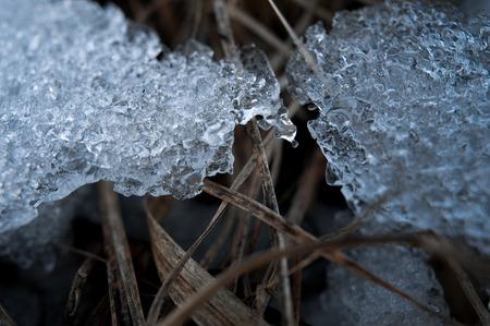 ice floe: Spring background - meltinh and cracking ice