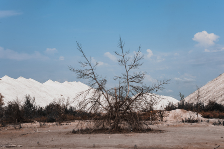 borax: White chemical mountains. Production wastes of chemical plant.