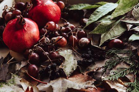 Autumn still life. apple, pumpkin, pomegranate, viburnum, leaves.