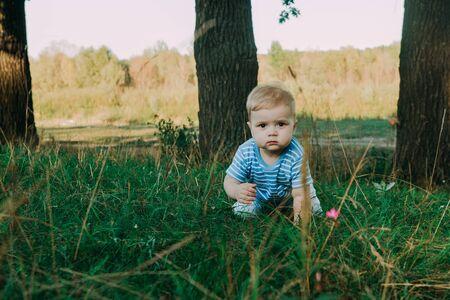 1 year old european cute boy on the grass. Birthday anniversary. Фото со стока