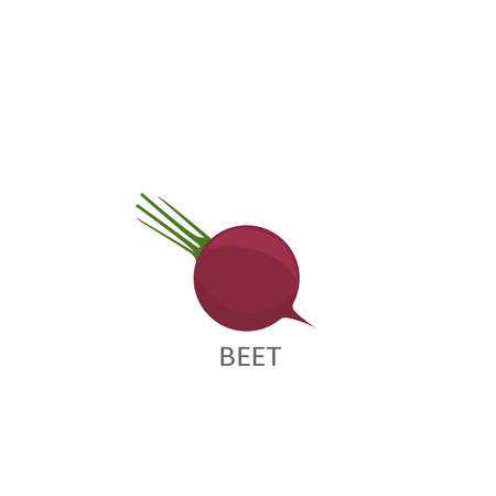 Beet. Ripe beetroot isolated over white background Vector illustration