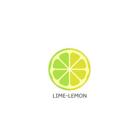 Lime lemon fruits icon isolated over white background Vector illustration