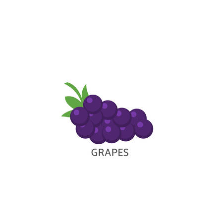Grapes. Blue purple grapes isolated over white background Vector illustration 向量圖像
