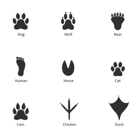 Paw print icon. Dog wolf bear human horse cat lion chicken duck prints Illustration
