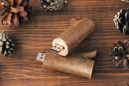 Creative wooden usb stick like a branch on dark wooden background. Two wooden usb-stick for photographer with fir cone on dark wooden background Stock Photo
