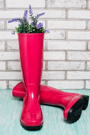 Pink rain boots with spring flowers Stock Photo
