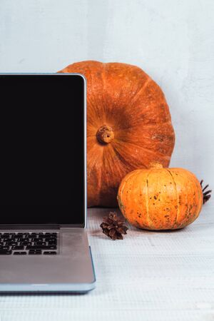 Orange pumpkins and red candles near a laptop computer on a table. Autumn season time