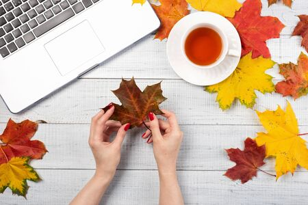 Workspace with red and yellow maple leaves, laptop, cup of tea. Top view of cozy office wooden desk. Autumn background, flat lay.