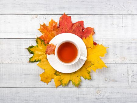 A cup of tea on yellow and red foliage isolated on a white background table. Autumn concept, top view 写真素材