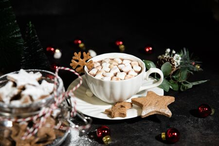 A cup of hot cocoa drink with homemade star-shaped gingerbread cookies on a dark