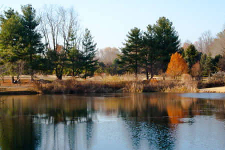 Fall foliage landscape with trees and reflection in a pond. 스톡 사진