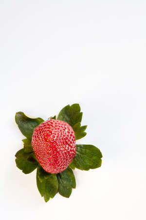 Red strawberry surrounded by green leaves isolated on white.