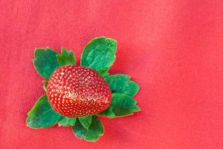 Red strawberry surrounded by green leaves isolated on red cloth background.