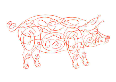 illustration of pig  on white background 向量圖像