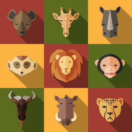 African Animal Portrait Set with Flat Design  Vector Illustration