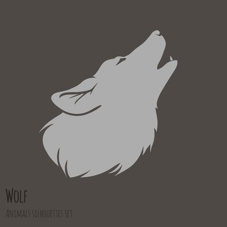 white wolf: Grey Wolf Silhouette on brown background  vector illustration