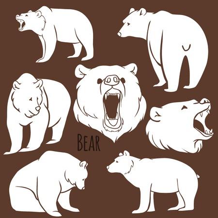 grizzly: Ensemble de silhouettes d'ours sauvages sur le fond. Vector Illustration