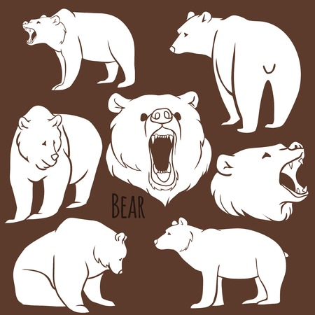 Set of wild bear silhouettes on the background. Vector Illustration