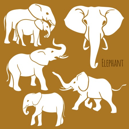 Set of African elephants in various poses. Vector Illustration