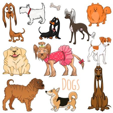 Variety Dog illustration  Vector