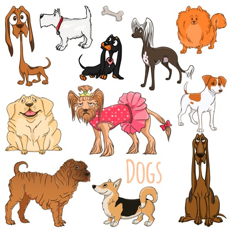 bloodhound: Variety Dog illustration