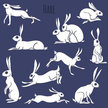 silhouette lapin: Ensemble de silhouette Hare isolé sur fond blanc. Vector Illustration. Illustration