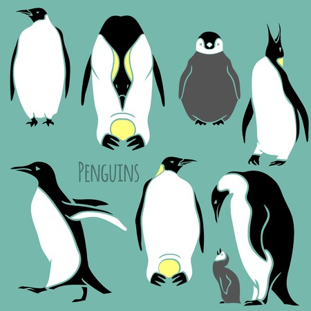 black and white penguin vector illustration - outline and silhouette set
