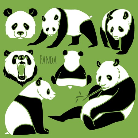 Set of Vector Asia Panda silhouettes black and white