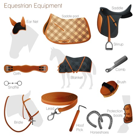 Set of equestrian equipment for horse. Saddle, bridle, Stirrup, Girth, Snaffle  Vectores
