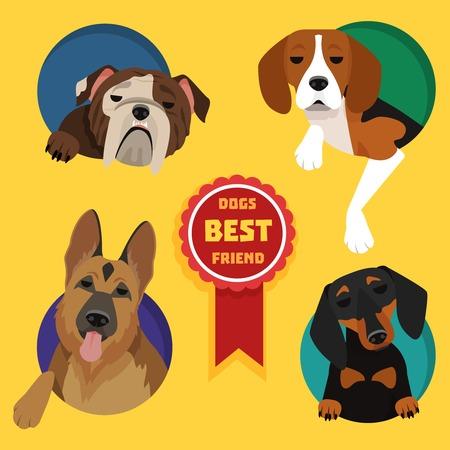 Set of different dog breeds. German Shepherd, Dachshund, English bulldog, Beagle