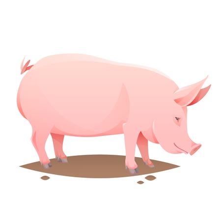 Rosa granja de cerdos en el fondo blanco. Ilustración vectorial