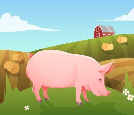 swine: Pink farm pig on farm background. Vector Illustration Illustration