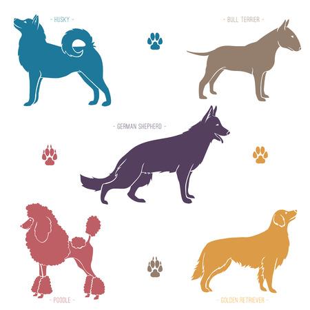 Conjunto de diferentes razas de perros siluetas. Ilustración de vector