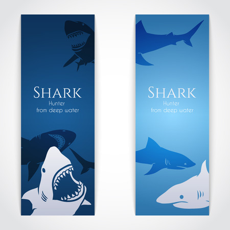 Set of banners with big sharks. Vector Illustration Vector