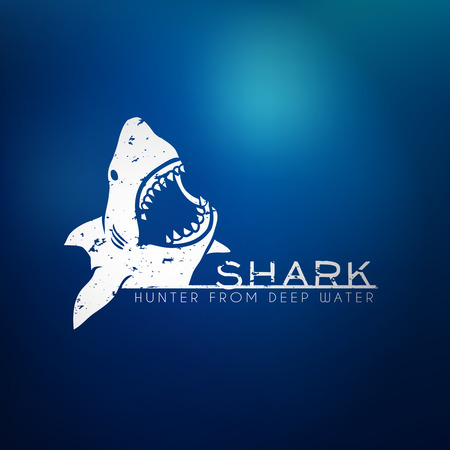 Shark concept logo with blur background. Vector illustration