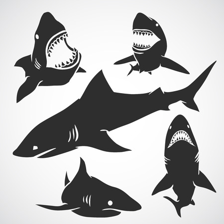 Set of big sharks black silhouettes. Vector illustration. Ilustração
