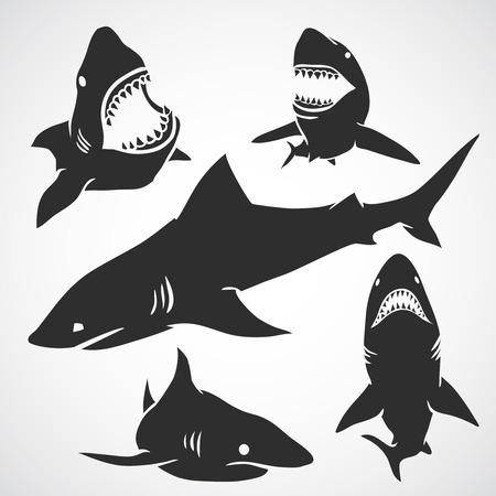 Set van grote haaien zwarte silhouetten. Vector illustratie.