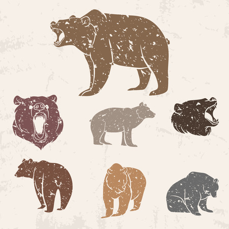 Set of different bears with grunge design. Vector illustration Vettoriali