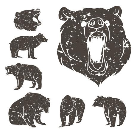 Set of different bears with grunge design. Vector illustration 일러스트