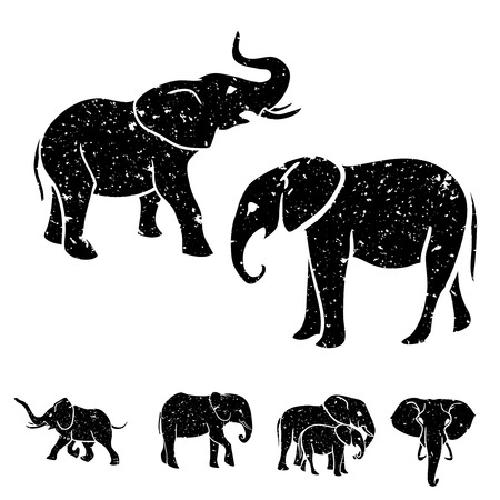africa safari: Black and white Elephants silhouettes set. Vector illustration