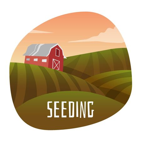 seeding: Farm Landscape. Stage in seeding. Vector illustration Illustration