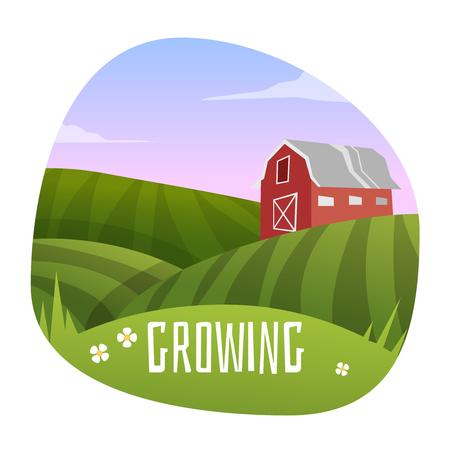 Farm Landscape . Stage in growing. Vector illustration Stock Illustratie
