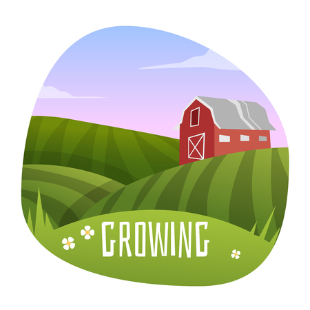 Farm Landscape . Stage in growing. Vector illustration Illustration