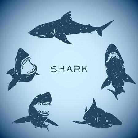 サメの概念の背景のグループ。ベクトル図