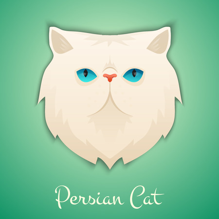 Persian cat face isolated with shadow. Vector illustration