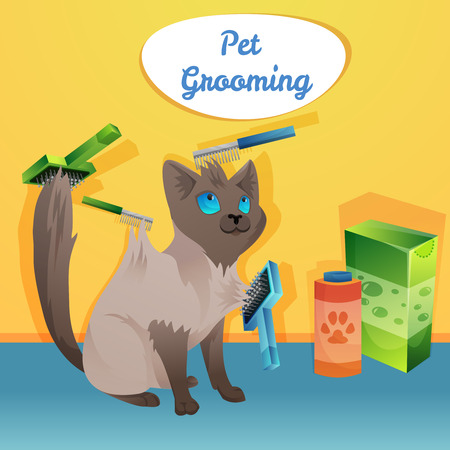 cat grooming: Cat character in groom salon. Vector illustration
